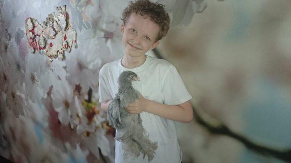 Андрей держит цыпленка кохинхин.
