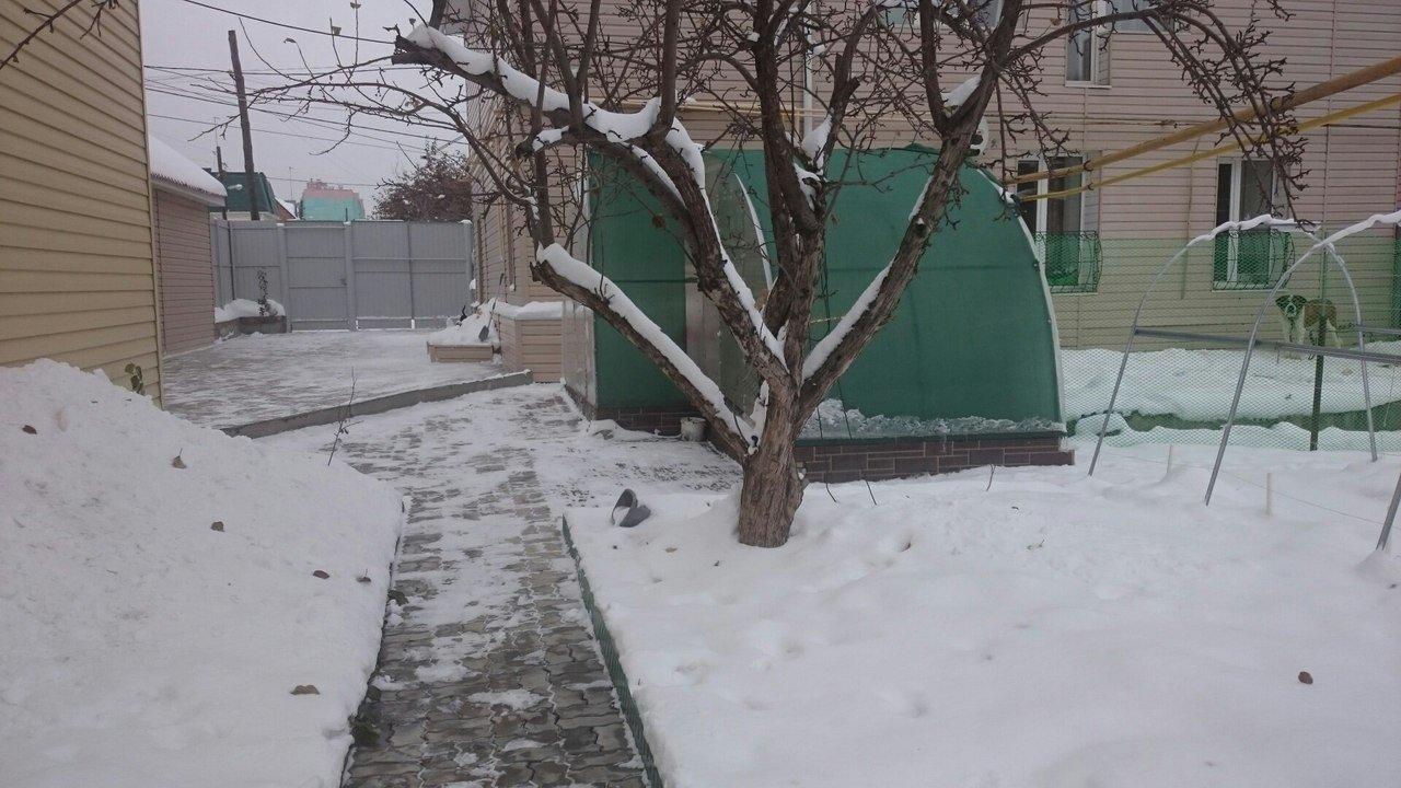 Курятник в теплице из поликарбоната зимой.
