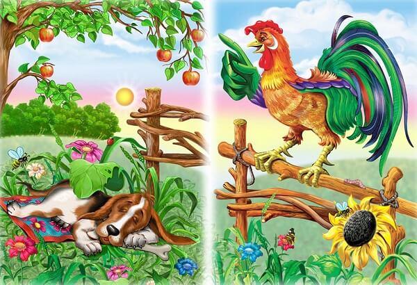 Сказка про курицу с петухом и их находке.