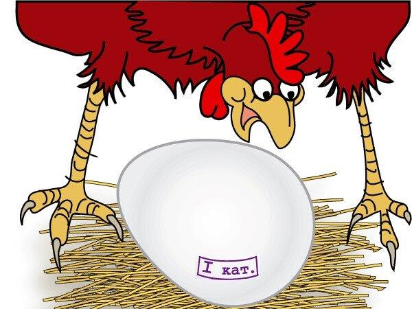 Огромное куриное яйцо.