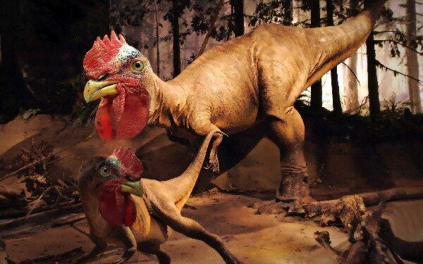 Курица это динозавр?
