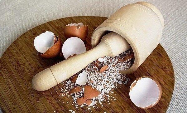 Измельченная яичная скорлупа.