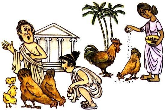 Курица и человек в Древней Греции.