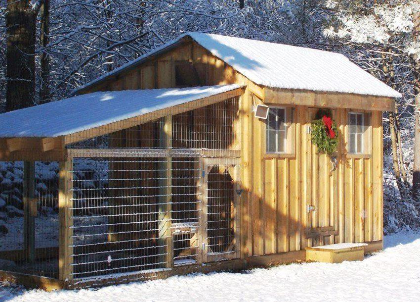 Зимний курятник на 20 кур своими руками – чертежи с фото и видео