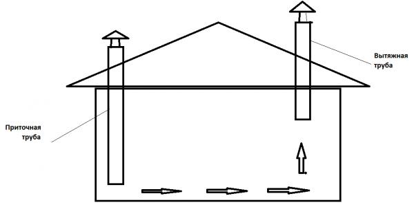 Как построить и обустроить курятник?