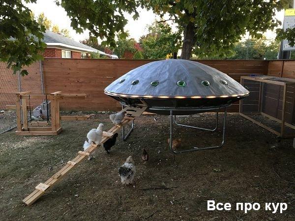 Курятник НЛО - пошаговое строительство с фото и видео.