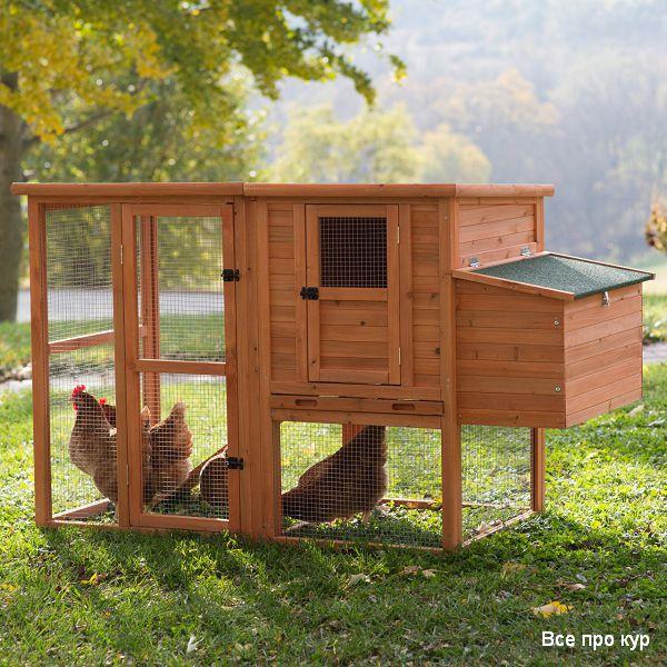 Выбираем строительные материалы для курятника.
