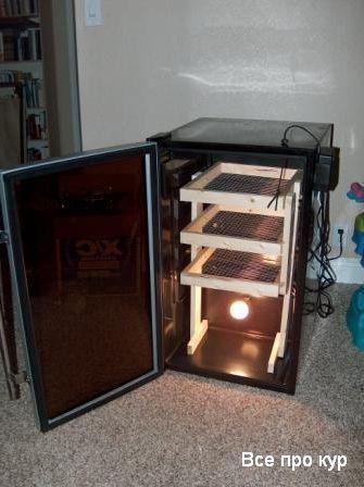 Инкубатор своими руками в домашних условиях.