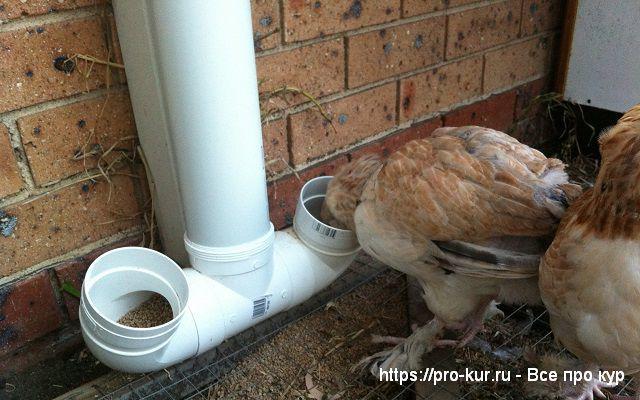 Кормушка для кур своими руками из водосточной трубы.