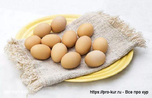 Самые распространенные заблуждения о яйцах.