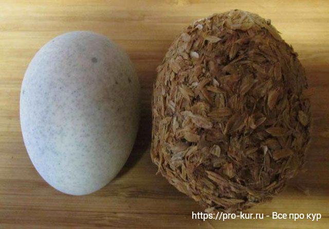 Столетнее яйцо купить или сделать самому? Что это и какое на вкус.