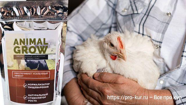 Стимулятор роста Animal Grow для кур и бройлеров.