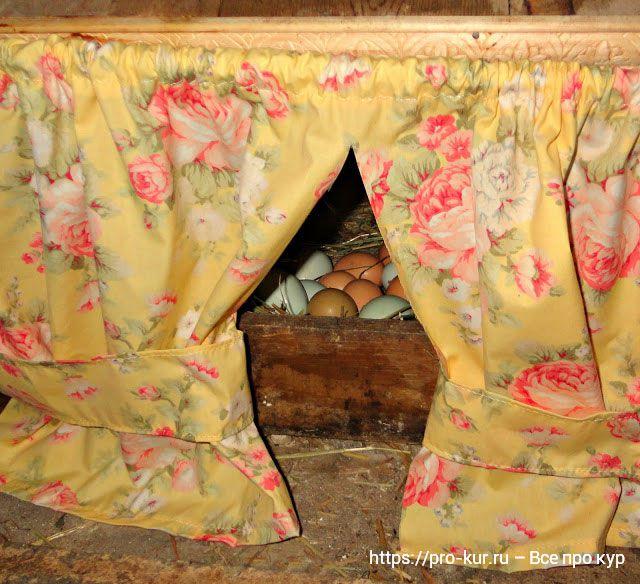 7 причин повесить занавески на гнезда для кур.