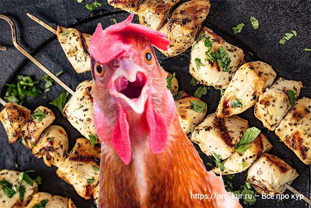 Как замариновать шашлык из курицы рецепты маринадов.
