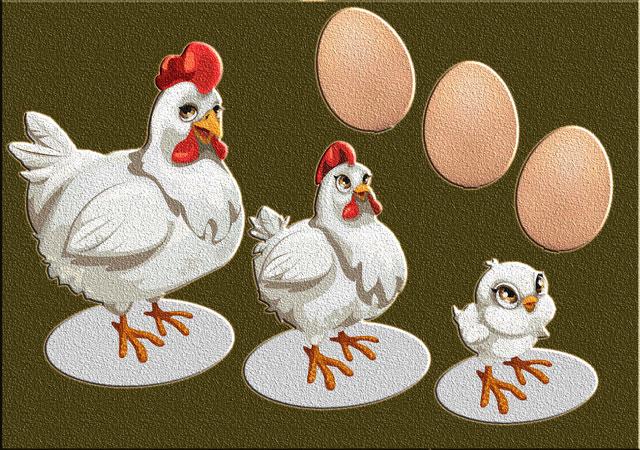 Что было первым: курица или яйцо? Загадка разгадана – яйцо!