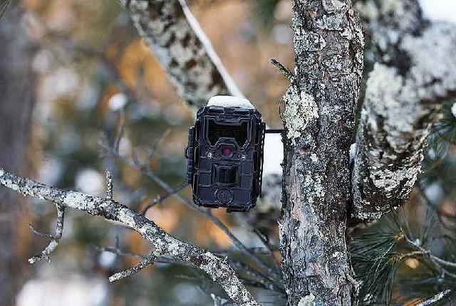 Носимые портативные видеорегистраторы фотоловушки.