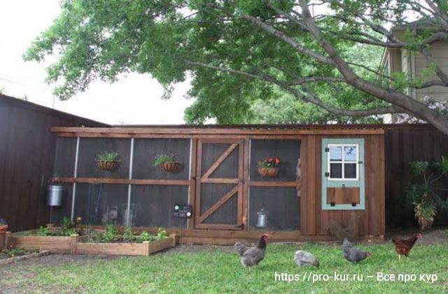 10 способов построить лучший курятник на лето в саду и на даче.