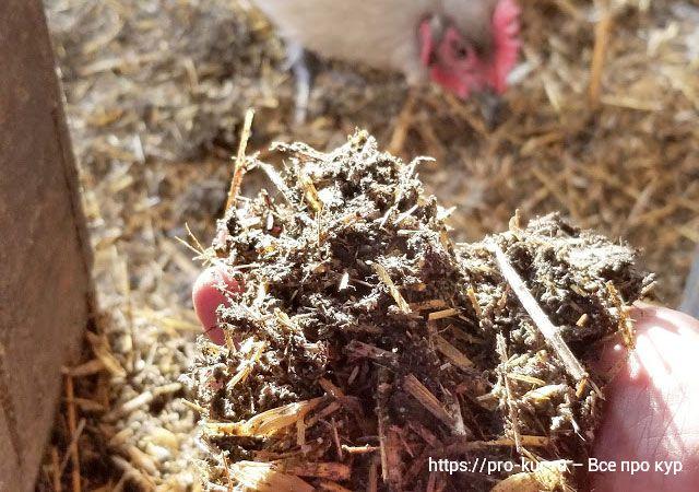 Ферментационная подстилка в курятник для кур несушек и бройлеров.