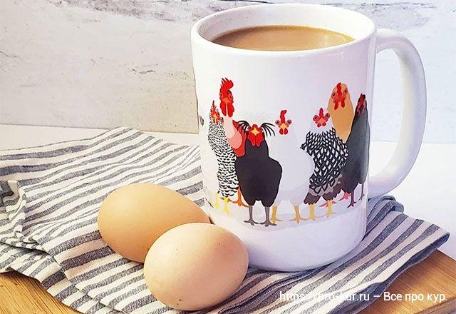 Почему куры не несут яйца причины и что делать.