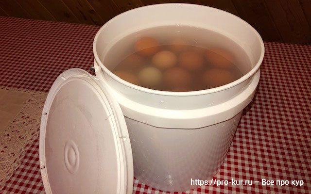 Хранение яиц в воде с известью – свежие стеклянные яйца через год.