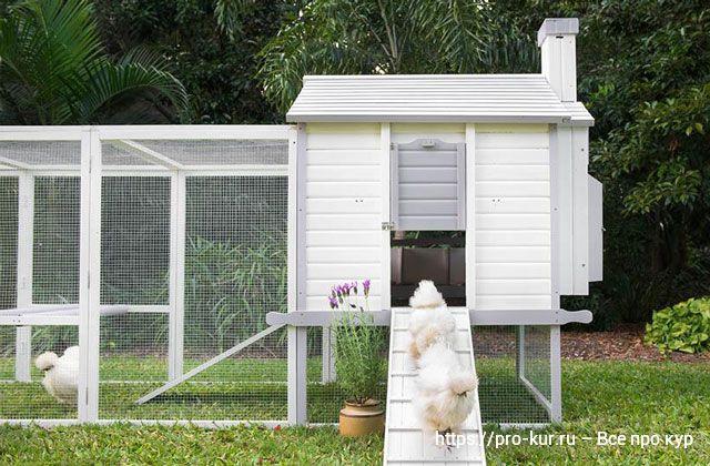 Идеальный курятник для лета на дачу или в сад.