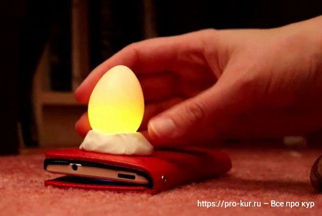 Как проверять яйца кур на свежесть и три способа хранения.