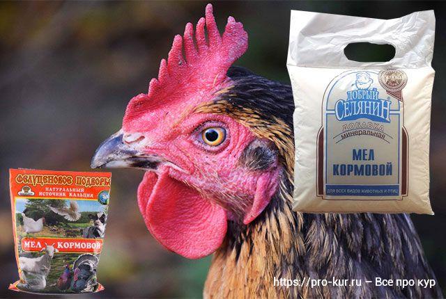 Мел курам и цыплятам бройлерам, как давать и сколько в день.