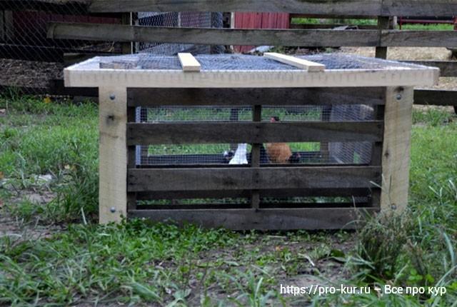 Простой уличный брудер для подращивания цыплят