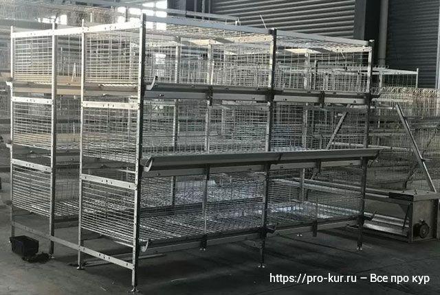 Содержание бройлеров в клетках в домашних условиях для новичков.