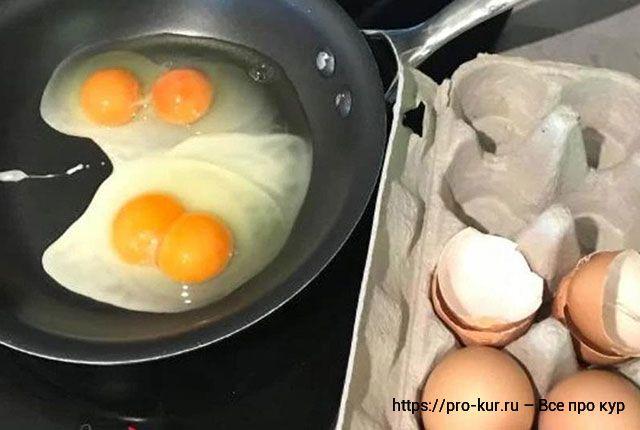 Двухжелтковые яйца – норма или аномалия, почему и причины.