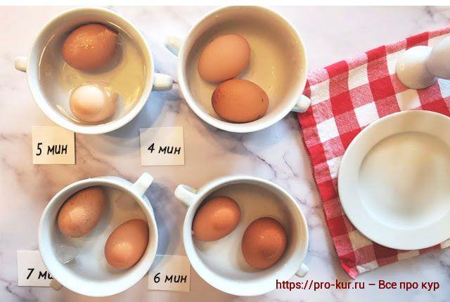 Сколько варить яйца в воде и на пару по минутам для разных целей.