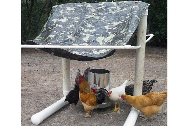 Сухая кормушка для кур в дождь – ПВХ трубы и брезент.